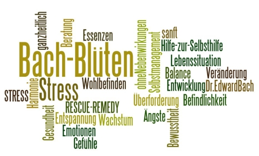 bachWordle